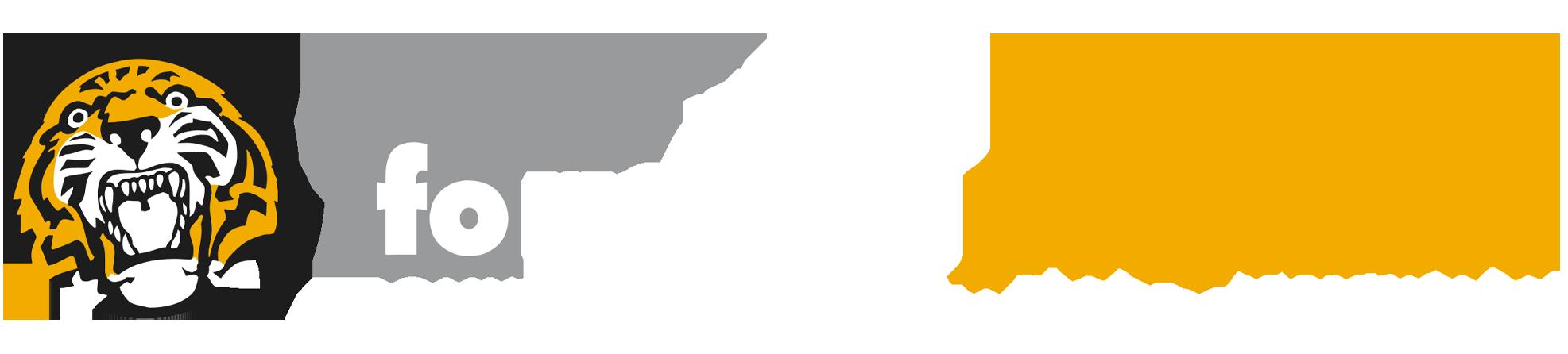 Fornaroli Polymers